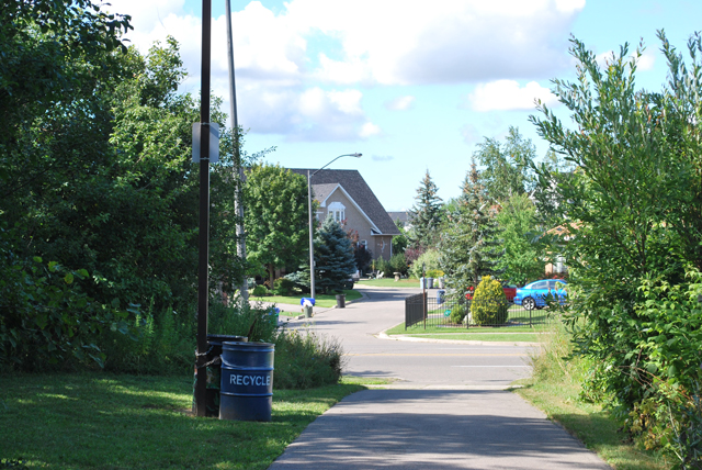 Entrance to Trelawny Woods Park