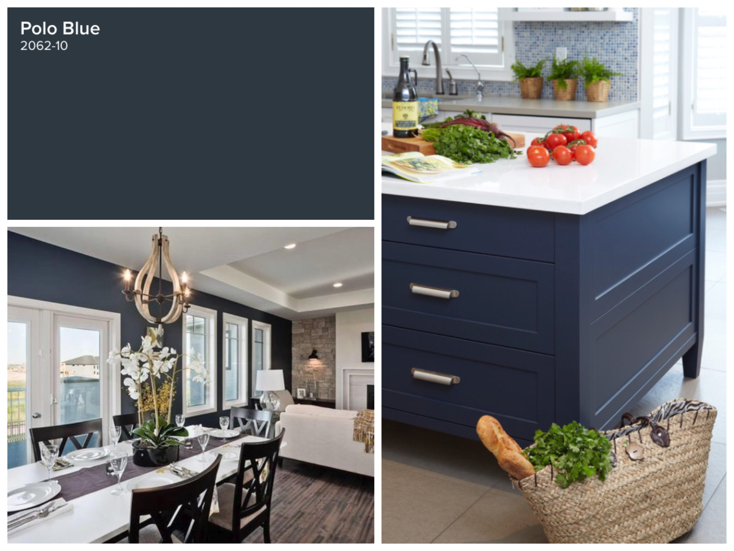 Polo Blue Benjamin Moore New Images