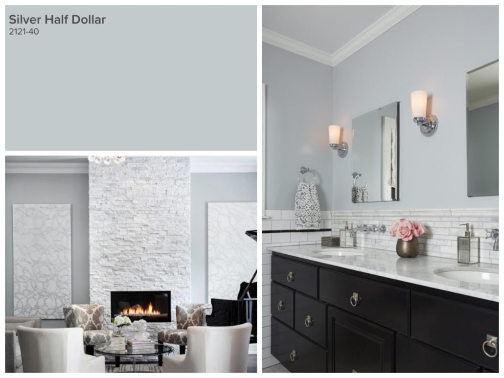 Top 10 Paint Colours Silver Half Dollar