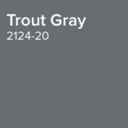 Benjamin Moore Paint Colour Trout Gray 2124-20
