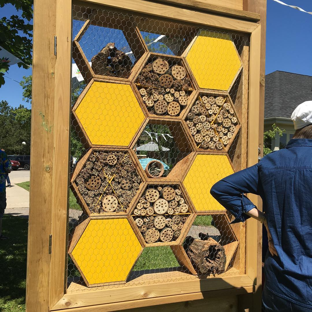 Bee hotel at Lake Wabukayne